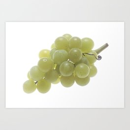 White Grapes  Art Print