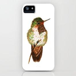 Volcano Hummingbird iPhone Case