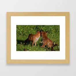 Mr & Mrs Fox (Back) Framed Art Print
