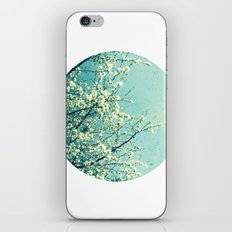 Blossom circle iPhone & iPod Skin