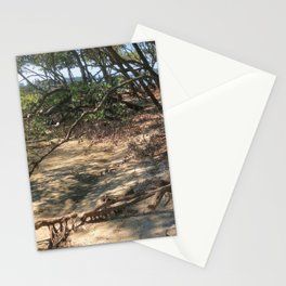 Path through the Mangroves Stationery Cards
