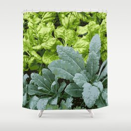 Healthy Lettuce Leaves Vector Illustration Shower Curtain