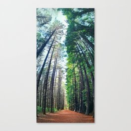 Treeburst Canvas Print