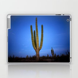 Blue cactus Laptop & iPad Skin