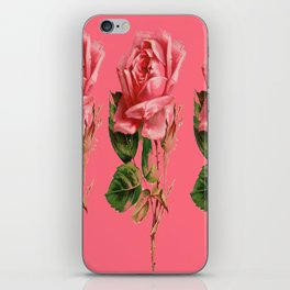 ROSE COLORED ANTIQUE VINTAGE ROSES iPhone Skin