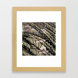 Shining gold Framed Art Print