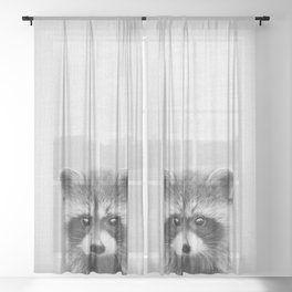 Raccoon - Black & White Sheer Curtain