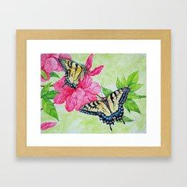 Tiger Swallowtai butterflies Framed Art Print