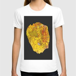 Cady Mountain Yellow Plume Agate T-shirt