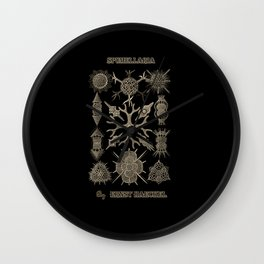 """""""Spumellaria"""" from """"Art Forms of Nature"""" by Ernst Haeckel Wall Clock"""