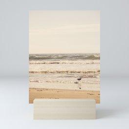 Beach Bird Mini Art Print