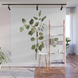 Eucalyptus Branch Wall Mural