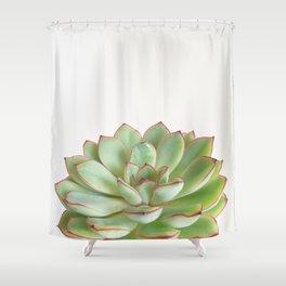 Green Succulent Shower Curtain