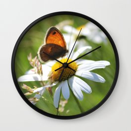 Daisy And Butterfly Wall Clock