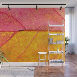 Nature Abstract: Cells and Veins of a Colorful Close up Autumn Leaf Wall Mural