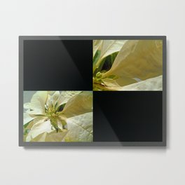 Pale Yellow Poinsettia 1 Blank Q2F0 Metal Print