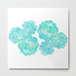 Rosette Succulents – Turquoise Palette Metal Print