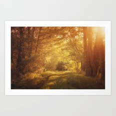 magical enchanted forest Art Print