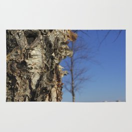 River Birch Bark up against the blues Rug