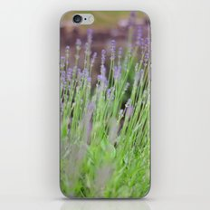 Somewhere Only We Know. iPhone & iPod Skin