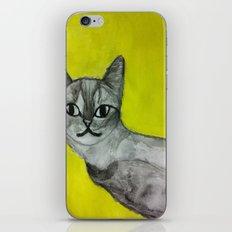 crooked kitty iPhone & iPod Skin