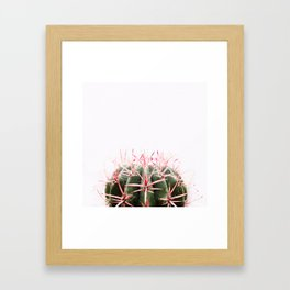 Cactus  Print - Minimal Abstract Succulent - Desert Cactus - Nature photography Framed Art Print