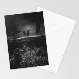 On the wrong side of the lake 10 Stationery Cards