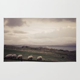 Sheep Grazing Jura Snow Rug