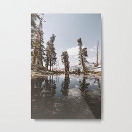 HEATHER LAKE Metal Print