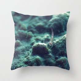 The welcoming little fish Throw Pillow