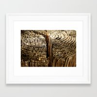 tree rings Framed Art Prints featuring Tree Rings by tracy-Me