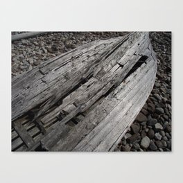 Treasure Within The Wreck Canvas Print