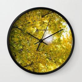 Sunlight Filtering through Beautiful Yellow Fall Foliage at Lake Cuyamaca, California Wall Clock