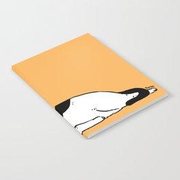 Lazy Notebook