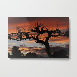 The Vines in Winter Metal Print