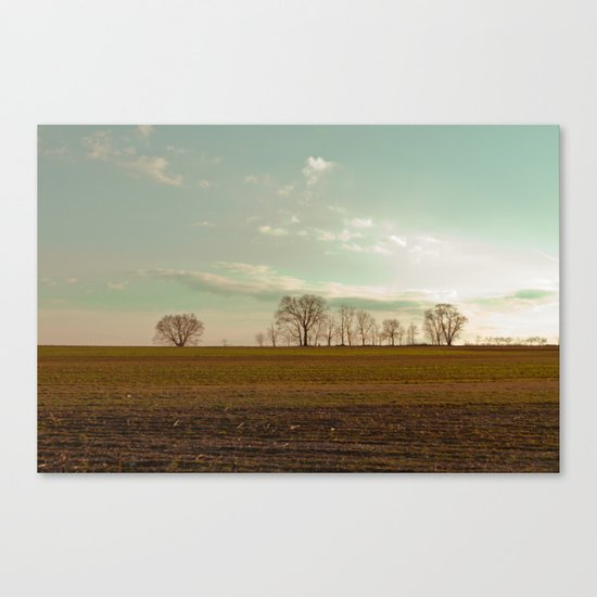Farmland Trees I Canvas Print