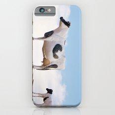 Catwalk Heifer Slim Case iPhone 6s