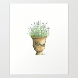 French Urn With Lavender Art Print