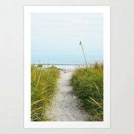 Beach Path to the Sea Art Print