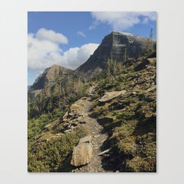Swiftcurrent Pass Trail in Glacier National Park Canvas Print