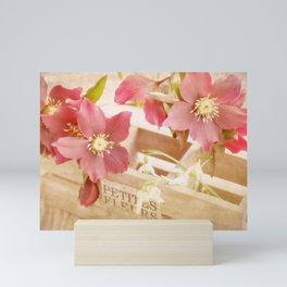 Romantik pink flower still life Mini Art Print