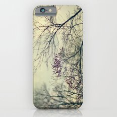 Before The Rain iPhone 6s Slim Case