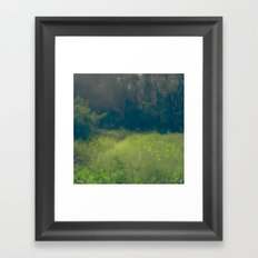 Greenbelt Framed Art Print