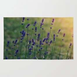 Field of Dreamflowers Rug