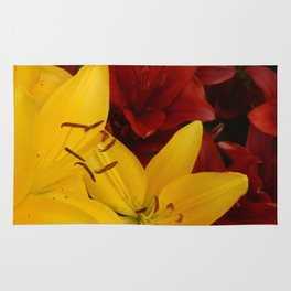 """""""A Gathering of Lilies"""" - 2 [D4466~24] Rug"""