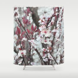 Blooming Plum Tree Shower Curtain