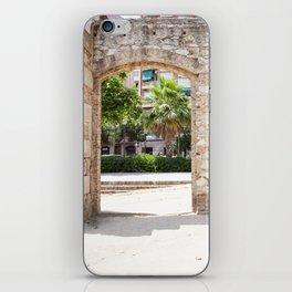 Park Life iPhone Skin
