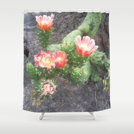 A cactus in its bloom Shower Curtain