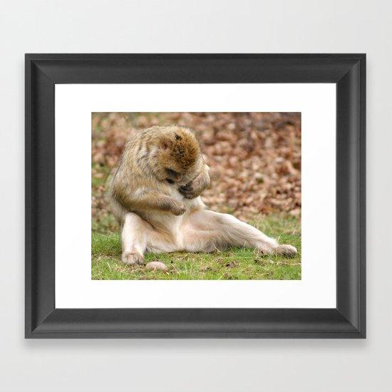"""""""What's That""""!!! Framed Art Print"""