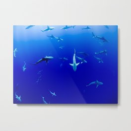 Party Sharks Metal Print